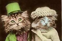 Cats in Hats....+ / Cats & more in hats / by Jan McDonald