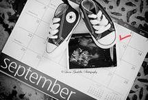 Babies, kids, pregnancy