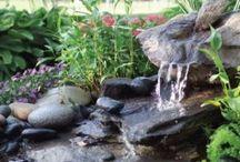 3/Garden ideas - Water Feature, Pool... / by Hellen
