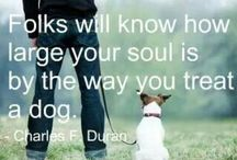 Quotes / by Sara Vinson