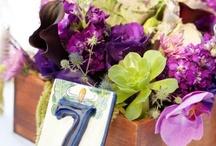 Wedding Prints / Save the dates Invites Menus Escort Cards / by Josie Petersen