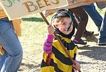 Save The Bees / Articles about ways to save the Bees and information around Pesticides and GMO's.