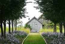 Gardens / by Rachel Roy