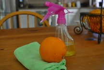 Homemade Cleaners / by Laura Bray Designs