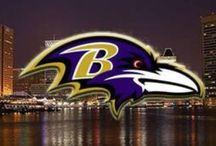 Baltimore Ravens / by Diane Adams