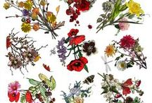 Floral Art / I find all kinds of inspiration and joy from flowers, don't you?