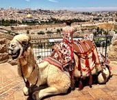 How to Explore Israel in a Week / Planning a trip to Israel and not sure where to start? The Holy Land makes for inspiring, fascinating, confusing travel. Here, I will share some of my personal travel adventures with VIBE Israel as well as some tips and tricks from others who've experienced travel in Israel, Jerusalem, the West Bank, and Gaza!