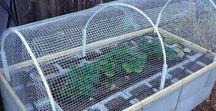 Gardening - Construction