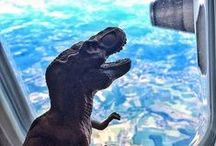 ☎ Jurassic Park ☜ ☜ ☜ / Jurassic Park ~ now with 47.4% more Tyrannosaurus Rex!
