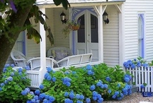 Beach or Lake Cottages / I want to live by the water, drink tea, and watch sunsets in my porch swing. / by Vicki Baker
