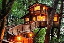 HOME | treehouse / Daydreaming amidst the trees / by Aly Butman