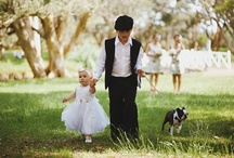 Wedding | Animals. / Dogs, horses, and other animals included in wedding shoots, taking part in weddings, and so on. :)