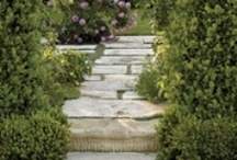 Gardening & Landscaping / Do you have a green thumb? We can help, with some great ideas for your home and garden.