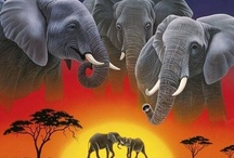 ELEPHANTASY / by Donna Powers