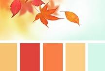 Color Palettes / by Mavis Hageman