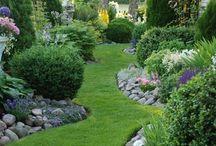 Ooh Garden