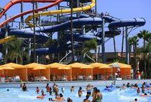 Orange County Tours & Activities