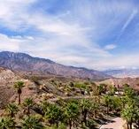 Palm Springs Event Venues