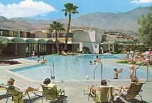 Palm Springs Lovin'
