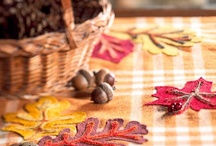 Autumn Days: Crafts / by Jeanette Swalberg