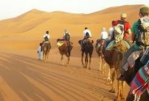 """MORROCCO--モロッコ-- / H.I.S.から2014年秋、新しい旅先""""モロッコ""""のご提案です。 How about to travel Morocco in Autumn ?"""