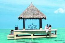 Wannago--honeymoon-- / いつか行きたい旅 ハネムーン編
