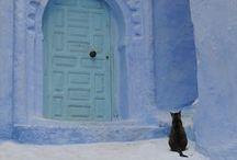 Trip with cats --ねこ旅-- / 猫好き必見!世界中の猫スポットを集めてみました!
