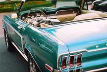 Mustang, my love / by Ella Mae