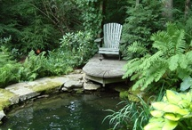 mi jardin / peaceful setting with lots of floral color / by Ruth Ann Stephan Adams