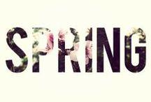 Springtime / by Sara Boehm
