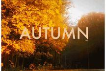 Crunching Leaves / by Sara Boehm