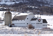 Farms, Barns & Fences / This Farmer Did It Right! / by Gigi's Little Luxuries