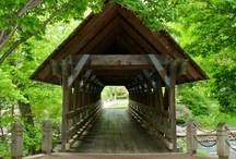 Covered Bridges / Would Like To See These For Myself / by Gigi's Little Luxuries