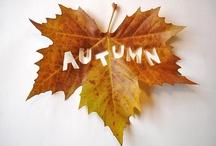 Seasons-Autumn
