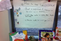 Shared Reading and Writing