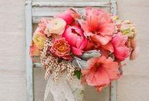 M + R's Wedding