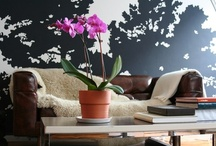 DCD Living Room Ideas / Design Plans, Color Schemes, and Special Items for that most important Entertaining Space