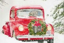 Winter / by Tabitha Prock