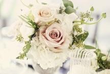 wedding / by Christi Rice