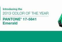 colour of 2013