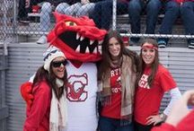 Red Dragon Pride / by SUNY Cortland