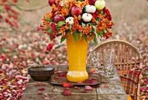 Autumn, trappings and fun stuff! / Anything to do with Autumn. One of my favorite times of the year. / by Yvonne Aguero