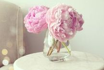 Pink Inspiration / Pink Peonies, pink frosting, pink shoes, pink ribbons and bows... we believe in pink!