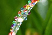beads / by Marlou M