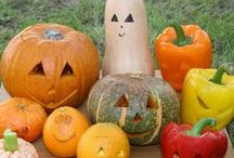 Healthy Halloween / Inspiration for Halloween treats and decorations! / by Copy Kids