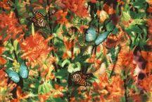 Wildflowers / by Judy & Judel Niemeyer / by Timeless Treasures Fabrics