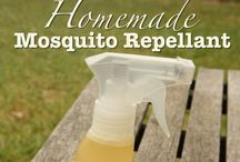 Bug Off!  / Natural ways to get rid of bugs in the house and yard / by Robin Nieto