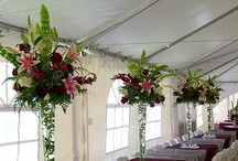 Receptions / From intimate gatherings to royal galas. We do it all and here are some of our goodies! Table centerpieces, toss bouquets, table scapes, buffet arrangements, ice sculptures, floral ceilings... if you can dream it we can make it happen!