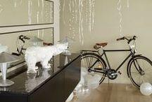 Biking / by Tina Hoffman