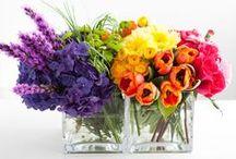 Flowers / by Tara